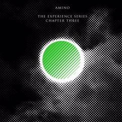Amino: The Experience Series Chapter Three