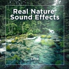 Ambient Effector: Real Nature Sound Effects