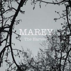 Marey: The Harvest