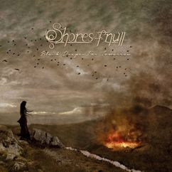 Shores Of Null: Black Drapes For Tomorrow