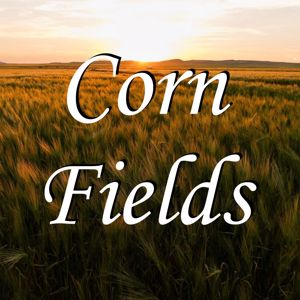 RodeoBoyz: Corn Fields