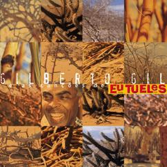 Gilberto Gil: As canções de eu, tu, eles