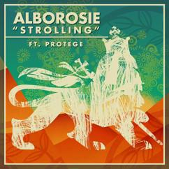 Alborosie: Strolling