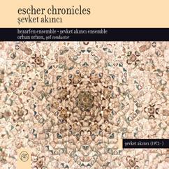 Şevket Akıncı: Escher Chronicles