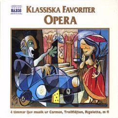Alexander Rahbari: Klassiska Favoriter: Opera (Classical Favourites: Opera)