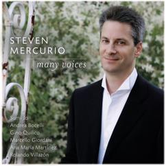 Steven Mercurio: Steven Mercurio: Many Voices