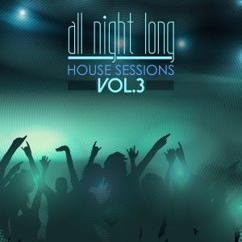 Various Artists: All Night Long House Sessions, Vol. 3