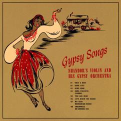 Alex Shandor And Gypsy Orchestra: Gypsy Songs - Shandor's Violin