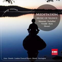 Various Artists: Music of Silence [International Version] (International Version)