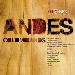 Nuevas Músicas Colombianas: Andes Colombianos (NMC Vol.4)