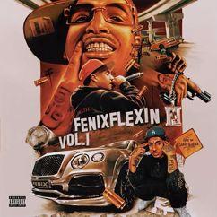 Fenix Flexin: NDS