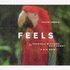 Calvin Harris, Pharrell Williams, Katy Perry, Big Sean: Feels