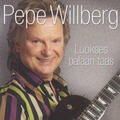 Pepe Willberg: Pilvi taivaan peittää
