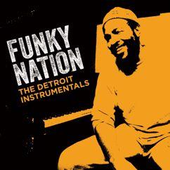 Marvin Gaye: Funky Nation