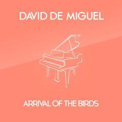 David de Miguel: Arrival Of The Birds