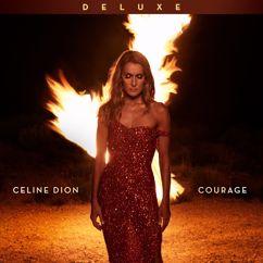 Céline Dion: Boundaries