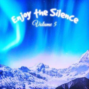 Various Artists: Enjoy the Silence, Vol. 5