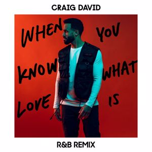Craig David: When You Know What Love Is (R&B Remix)