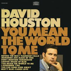 David Houston: Memories Are Made of This