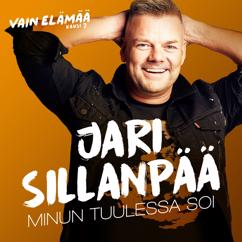 Jari Sillanpää: Minun tuulessa soi (Vain elämää kausi 7)