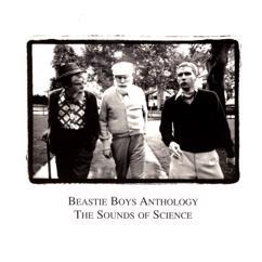 Beastie Boys: Dub The Mic
