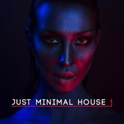 Various Artists: Just Minimal House, Vol. 1