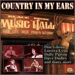 Various Artists: Country in My Ears