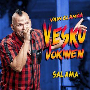 Vesku Jokinen, Klamydia: Salama (Vain elämää kausi 11)