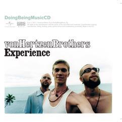 Von Hertzen Brothers: Experience
