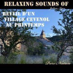 Julien Nègre: Relaxing Sounds of - Réveil d'un Village Cévenol au Printemps - Pure Nature