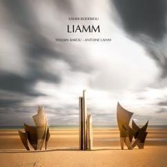 Xavier Boderiou with Sylvain Barou & Antoine Lahay: Liamm