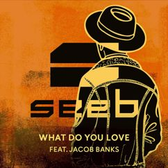 Seeb: What Do You Love