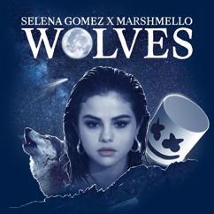Marshmello, Selena Gomez: Wolves