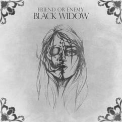 Friend or Enemy: Black Widow