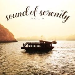 Various Artists: Sound of Serenity, Vol. 9