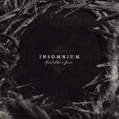 Insomnium: And Bells They Toll