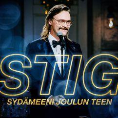 STIG: Sydämeeni joulun teen (Vain elämää kausi 11)