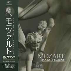 Adam Czerwiński: The Queen of The Night Aria (from the Magic Flute)