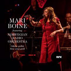 Mari Boine, Norwegian Radio Orchestra: Gilvve gollát - Sow your gold