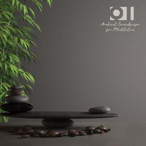 Various Artists: Qi: Ambient Soundscape for Meditation
