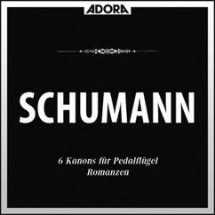 Westfälisches Sinfonieorchester, Richard Kapp, Hans-Christoph Becker-Foss, Waler Klien: Schumann: Ouvetüre, Op 52 - 6 Kanons, Op. 56 - Romanzen, Op. 28