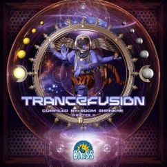 Various Artists: Trancefusion Chapter 2 (Compiled by Boom Shankar)