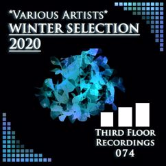 Various Artists: Winter Selection 2020