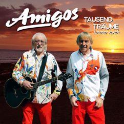 Amigos: Tausend Träume immer noch