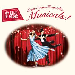 Various Artists: My Kind of Music: Great Songs from the Musicals!