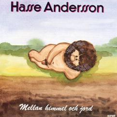 Hasse Andersson: Måsen