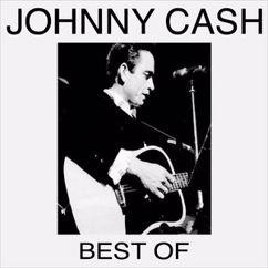 Johnny Cash: Lost on the Desert