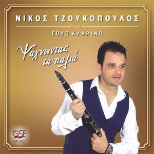 Νίκος Τζουκόπουλος: Ψάχνοντας τα παλιά