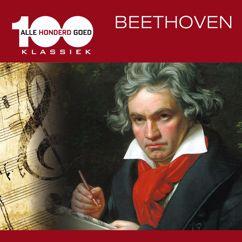 James Morris: Beethoven: Symphony No. 9 in D Minor, Op. 125: 'Ode to Joy'