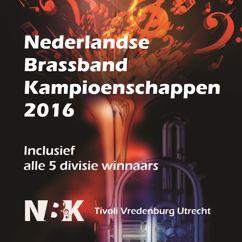 Various Artists: Winnaars Nederlandse Brassband Kampioenschappen 2016